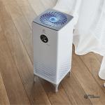 Electrolux EAP-1040D Yin&Yang vashklimat 13